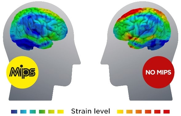 MIPS Strain Level on Brain