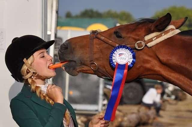 woman sharing carrot with horse