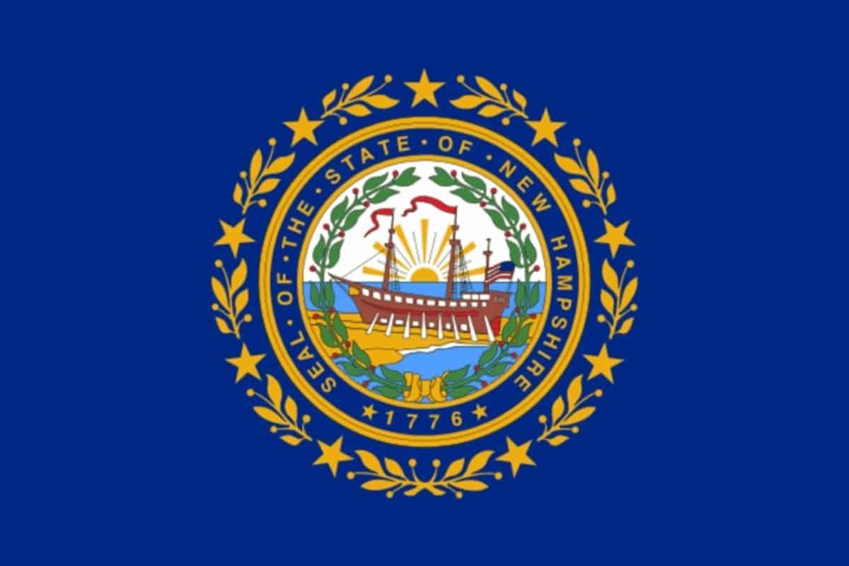 State flag of New Hampshire by Pixnio.com