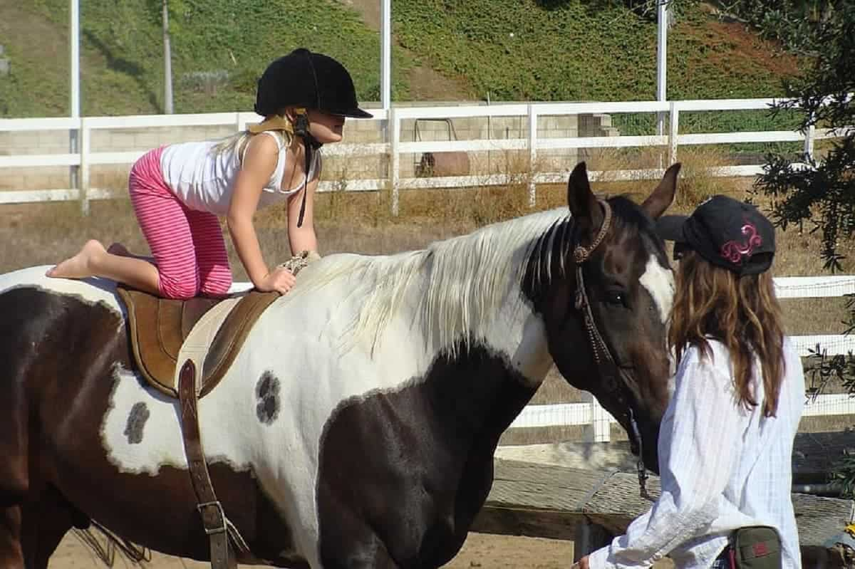 Toddler on horse back.