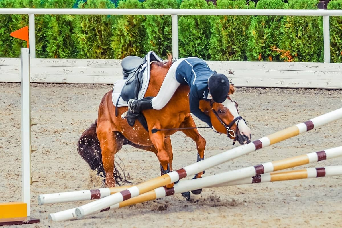 Rider slides over horses neck as horse refuses to jump